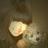celia_tinysnow