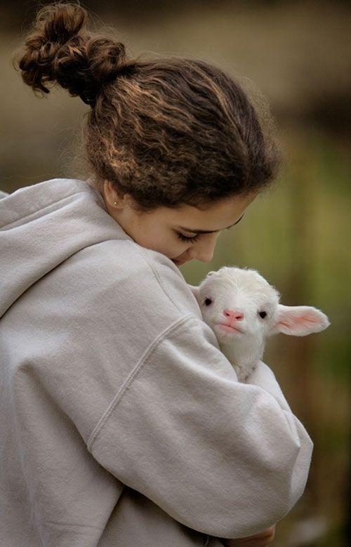 【动物】超可爱的动物宝宝