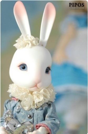 萌兔可爱(45)大学里的小设计(28)一些小收藏(23)姐