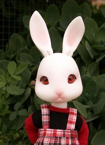萌兔娃娃图片大全可爱