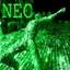 neotrack