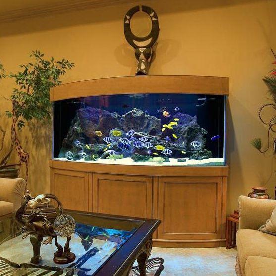 居家客厅鱼缸效果图4