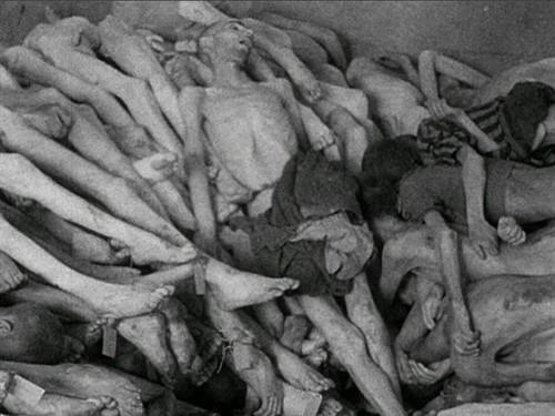 德国纳粹_大屠杀的目光伦理——西方电影的大屠杀话语及其困境 天堂电影 ...