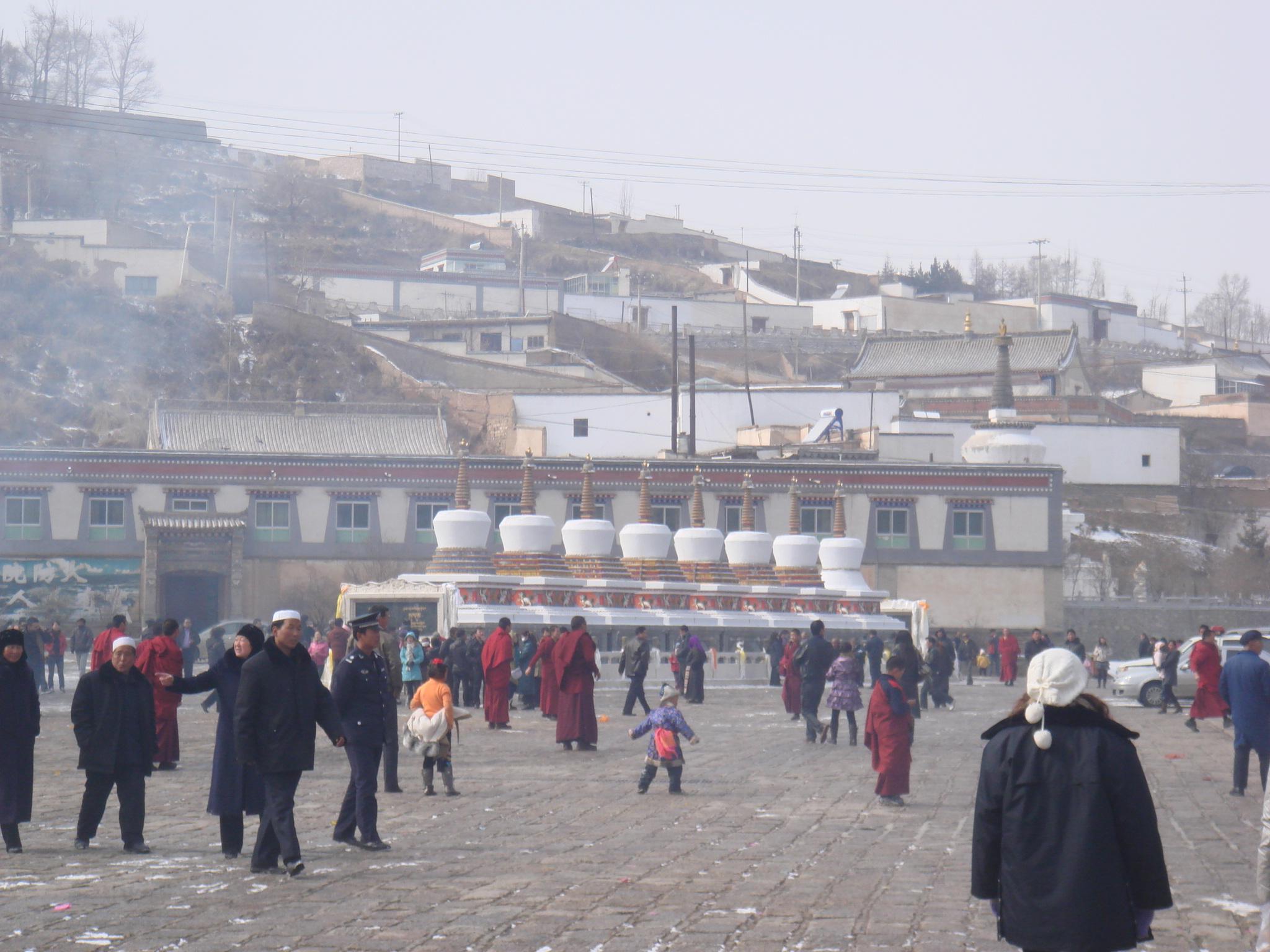 (0) 照片标签 雪中的塔尔寺(4)