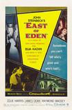 伊甸园之东East of Eden