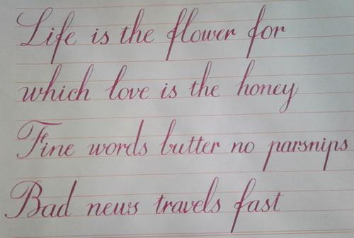 漂亮的手写英文字体图片