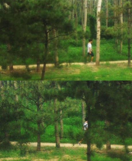 大巴上拍到窗外树林里的人