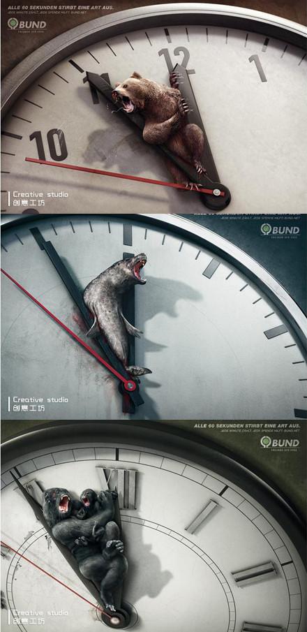 公益广告:每60秒就有一个物种灭绝
