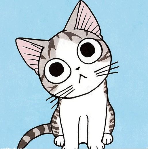 【我和猫的故事】