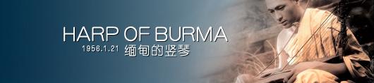 缅甸的竖琴分享展示图片