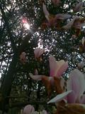 201204031973_副本