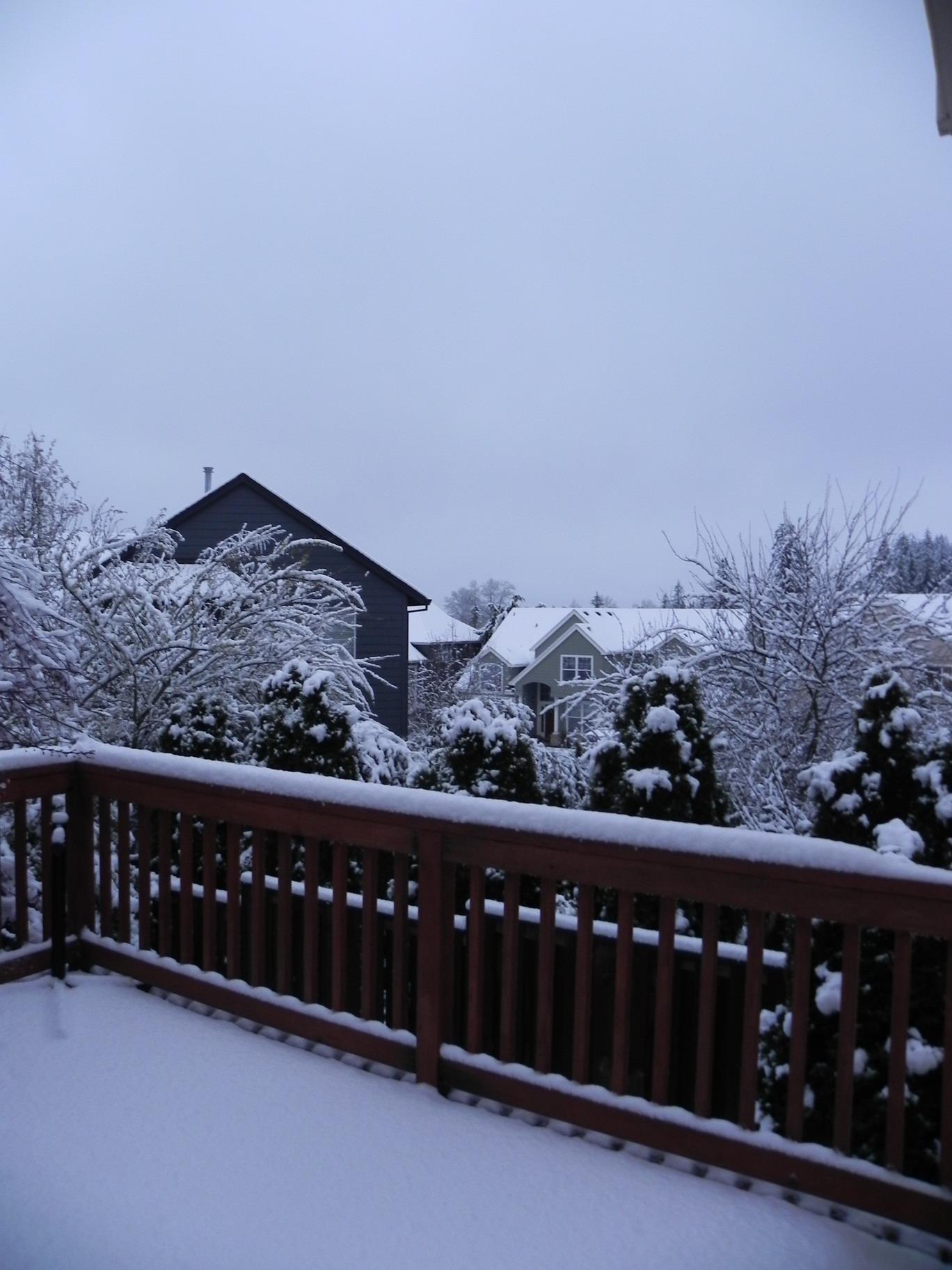 大连棒槌岛雪景